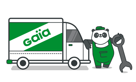 Camionette Verte